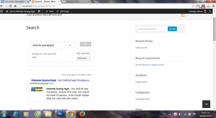 google-custom-search8