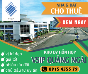 dich-vu-website-tai-quang-ngai