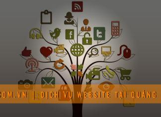 dich-vu-website-tai-quang-ngai-ticcom