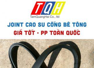 JOINT-CAO-SU-CONG-BE-TONG-TAM-QUANG-HAI (1)
